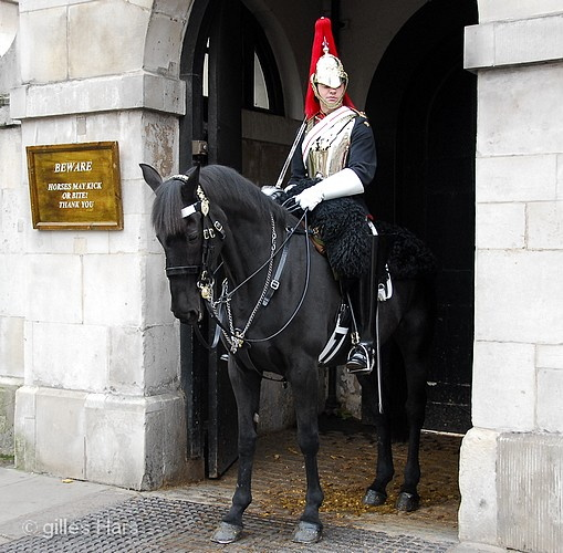 001 horse guards westminster.JPG