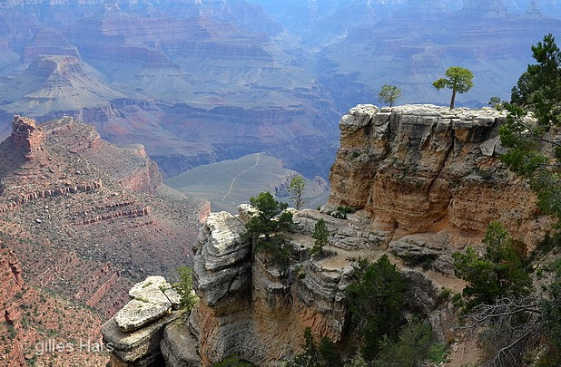 002 grand canyon, route 66.jpg