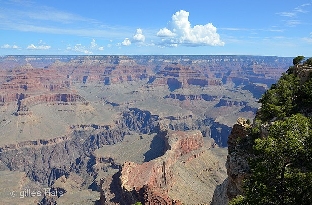 007 grand canyon, route 66.jpg