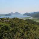 Parc national du lac Skadar.